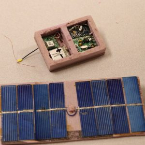 A close up of David's GPS tracking/radio beacon and power supply