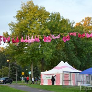 Start/Finish Line at the Run for the Cure 2012