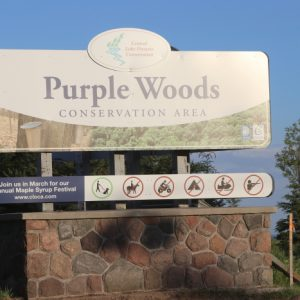 Purple Woods: Home of North Shore ARC's Repeater Site
